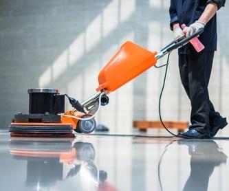 Limpieza de colegios: Servicios de Limpiezas MG