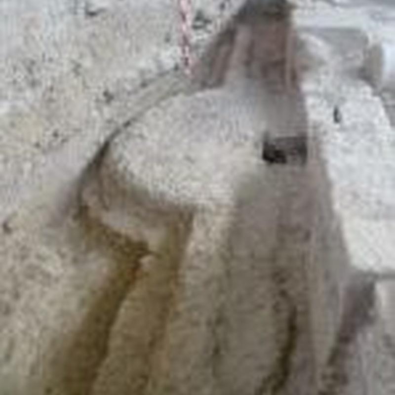 Fuente del Peristilo: Turismo arqueológico de Villa Romana de Salar