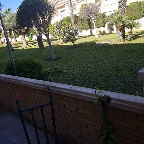 Mantenimiento de jardines y comunidades Alicante