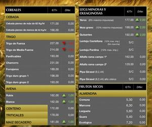 Lonja de Albacete 27.06.19 Cereales & Almendra