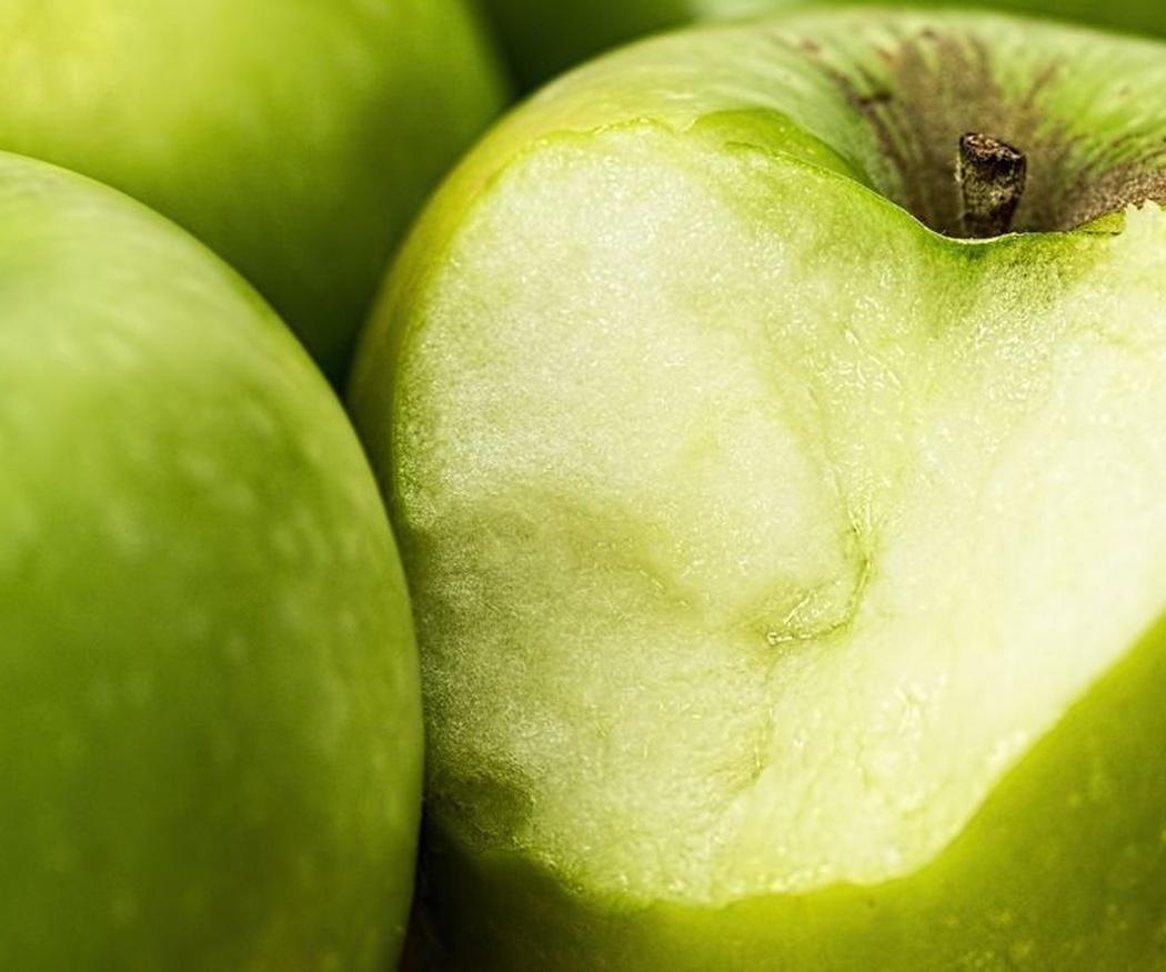 Frutas que pueden ser perjudiciales para tu perro