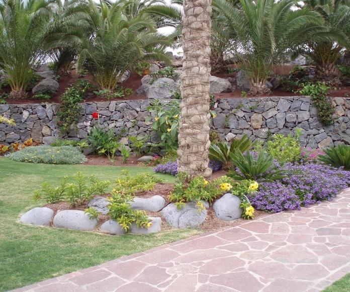 Decoración: Productos y Servicios de Islas Jardín, S.L.
