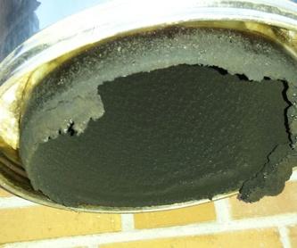 Limpieza de campanas extractoras: Servicios de Cima