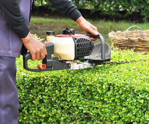 Trabajos de jardinería