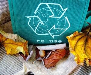 Los palets y el éxito de su reciclaje