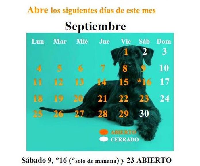 Narval Mascotas peluquería canina Leganes | CALENDARIO SEPTIEMBRE 17