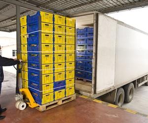 Transporte de fruta online