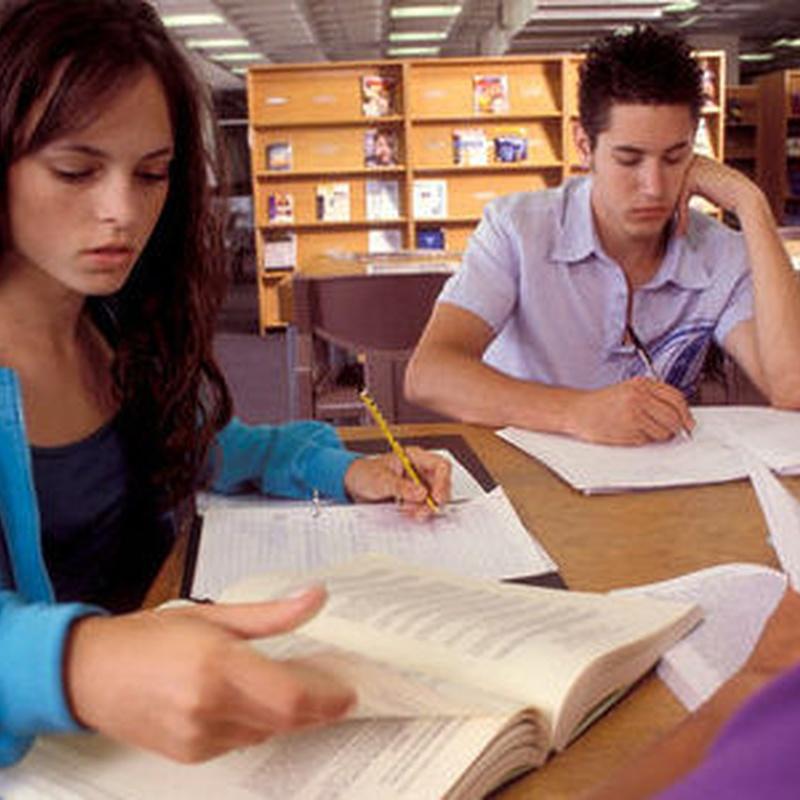 Cursos de verano: julio y agosto: Servicios de Academia CEPA