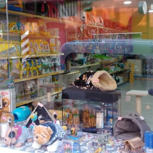 Tienda con complementos para animales en Valladolid