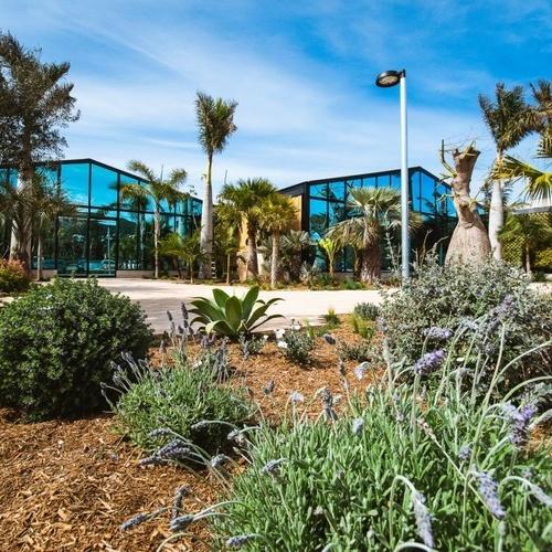 Diseño de jardines en Ibiza