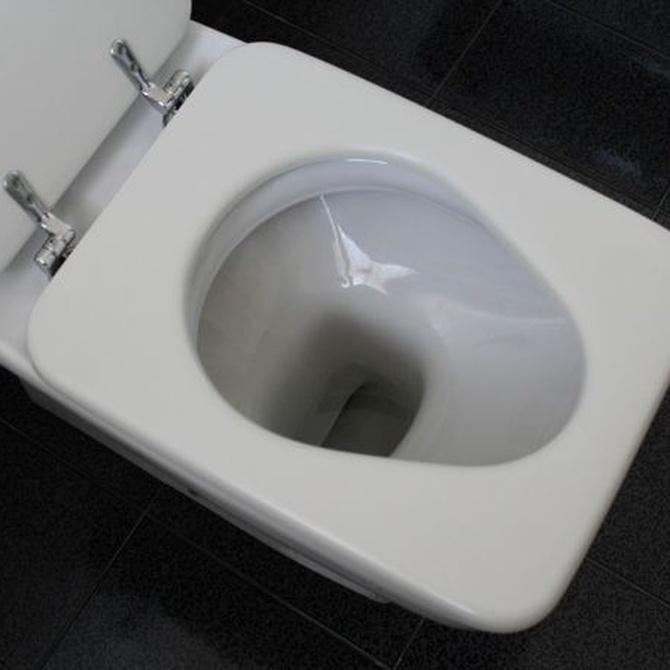 Cinco objetos que no debes tirar por el inodoro