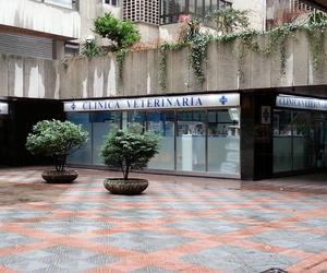 Veterinarios en León   Clínica Veterinaria Ricardo Díez Reyero