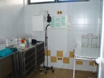 Todos los productos y servicios de Veterinarios: Clínica Veterinaria Belén Carasa