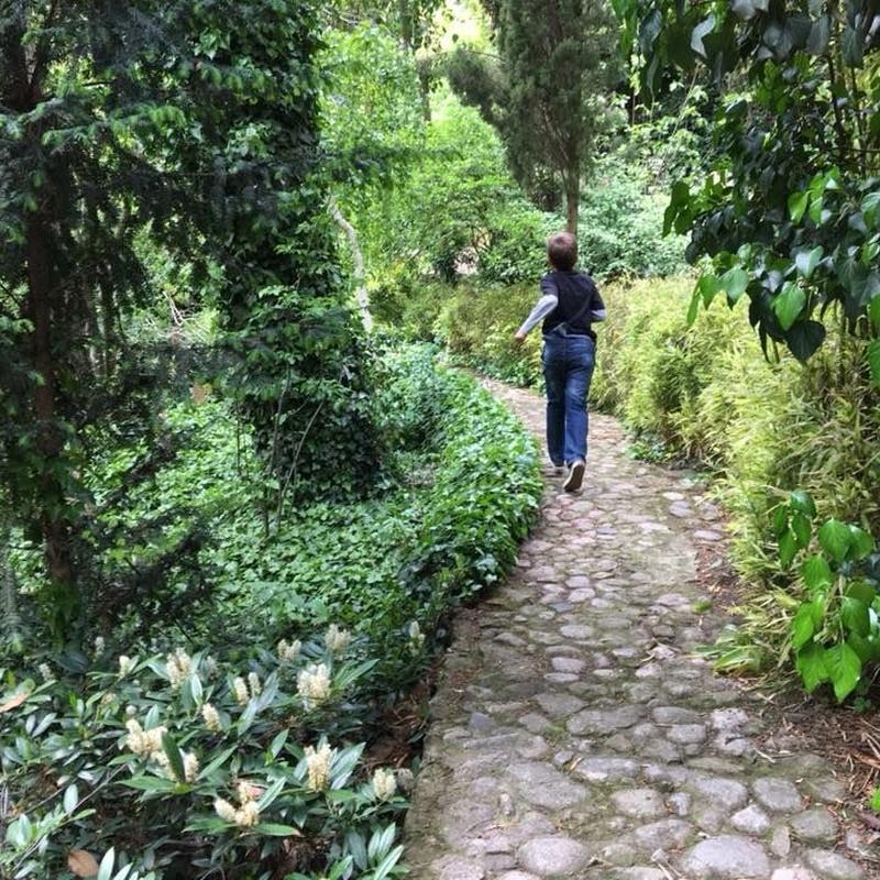 Visitas turísticas: Servicios de Romeral de San Marcos