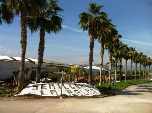 Vistas del Centro de jardinería desde la rotonda del Camino de Remanentes.
