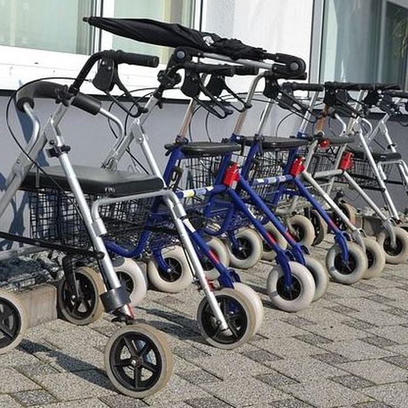 Rehabilitación y movilidad: Catálogo de Vida Independiente Bizitza