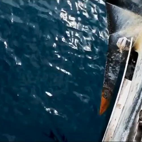 Tiendas náuticas en Las Palmas de Gran Canaria | Pedro Ramos