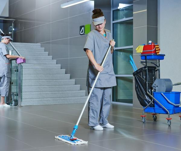 Limpieza  de organismos públicos