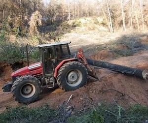 Explotación y limpieza forestal