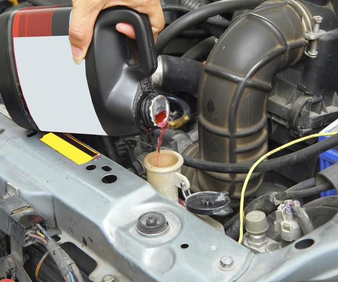 Mantenimiento: Servicios mecánicos de Davial Motor
