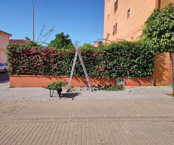 Mantenimiento integral de comunidades en Córdoba   Cabymar Mantenimientos