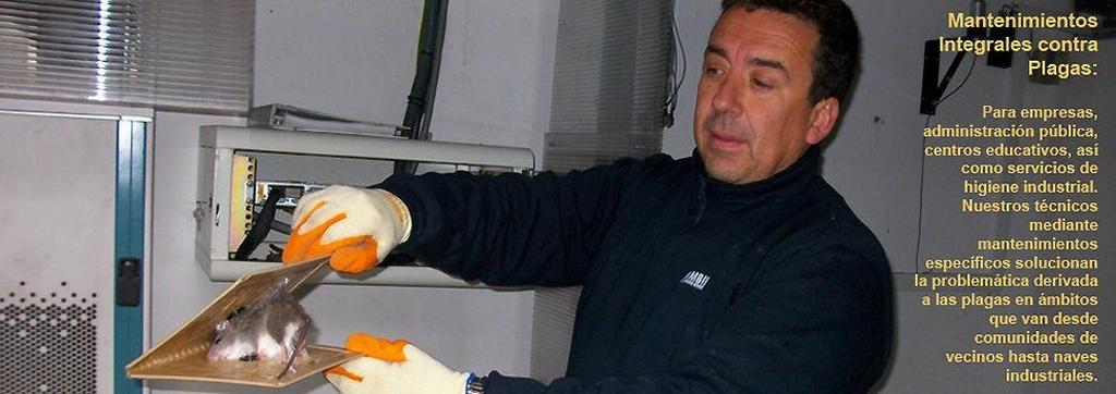 Control biológico de plagas en Valencia | Ecoambiente Sanidad Ambiental