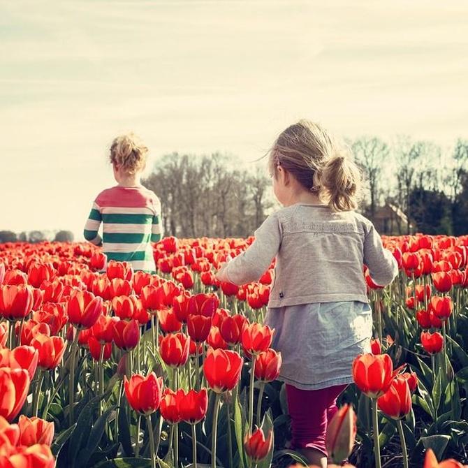 ¿Por qué es tan importante la infancia en la vida del ser humano?