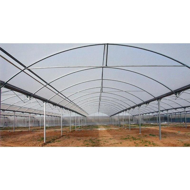 Invernaderos Multitúnel Arqueados: Invernaderos de Invernaderos Campos