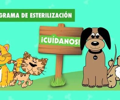 CAMPAÑA DE CONTROL DE NATALIDAD DE PERROS Y GATOS DE OCTUBRE A FEBRERO