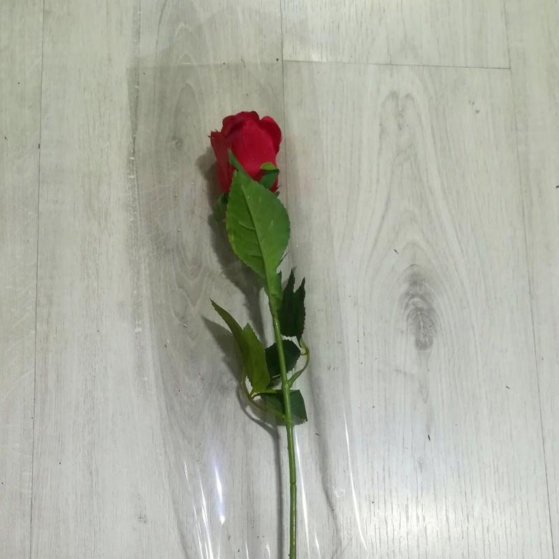 PQTE. (x 100 unid.) LARGA (16x70 cm.) TRANSPARENTE. PRECIO: 10 €