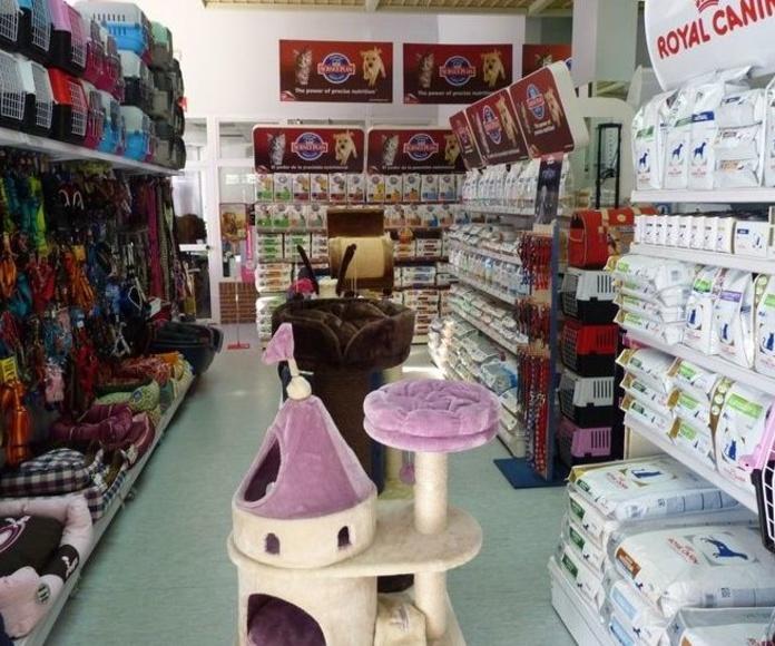 Pienso Express. Tienda de alimentación y accesorios para mascotas en Madrid centro