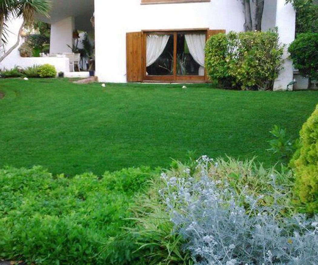 Las zonas verdes son importantes para nuestro bienestar
