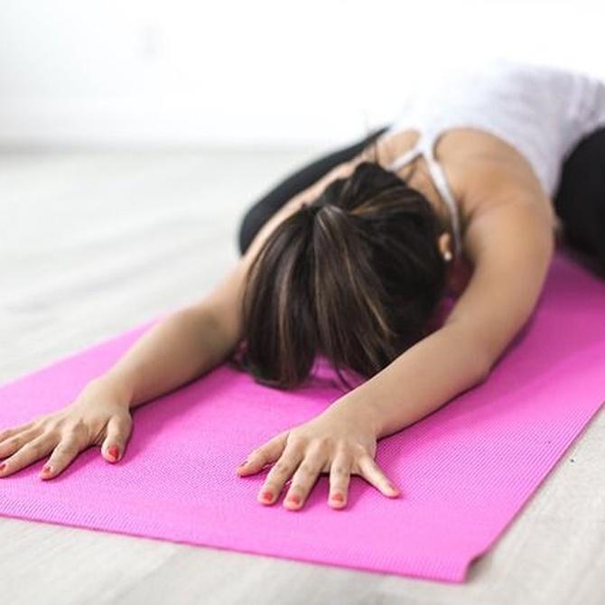 Las fases de un entrenamiento de yoga