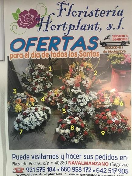 Flores para el dia de todos los Santos en Segovia