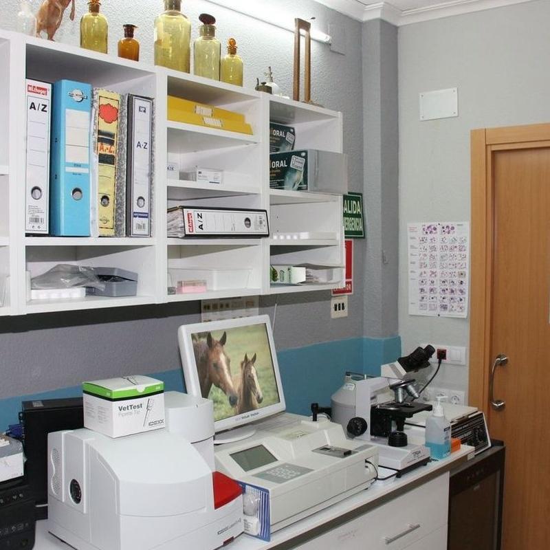 Analíticas: Servicios de Clínica Veterinaria Jeremías