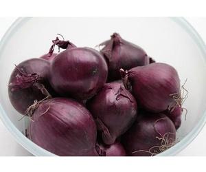 Hortalizas y verduras: Mundifruit
