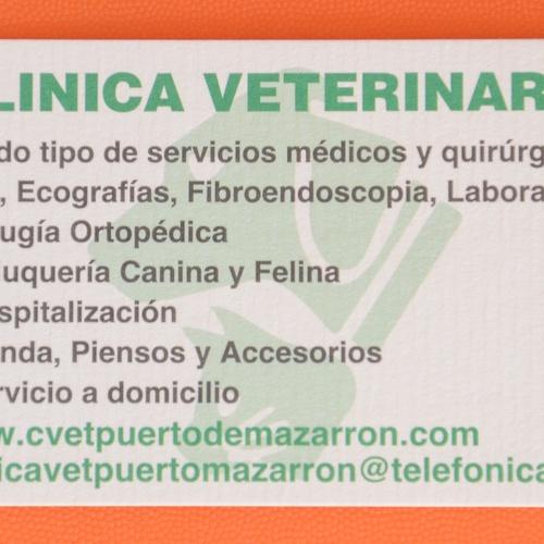 Veterinarios en Puerto de Mazarrón | Clínica Veterinaria Puerto Mazarrón