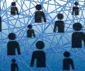 Ordenadores: Servicios de Iber Informática