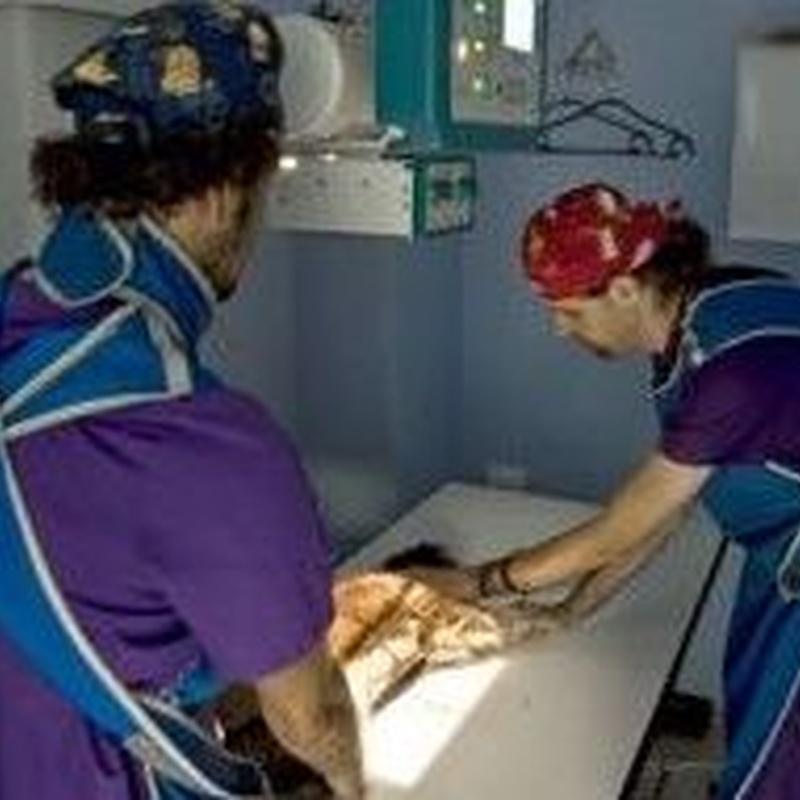 Radiología: Catálogo de Clínica Veterinaria Jaira