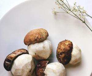 Cocina con productos de temporada y proximidad