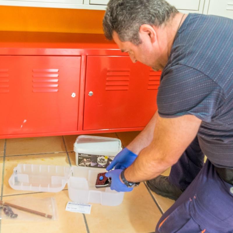 Desratización: Servicios de AGP Sanidad Ambiental