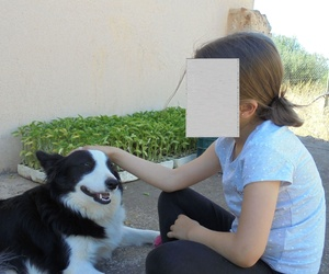 Clínica veterinaria en Sencelles | Rubinca Clin-Vet