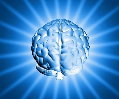 Cerebros bilingües