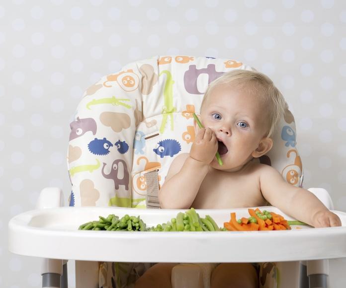 Servicios de comedor de catering: Servicios de Pipiolos Escuela Infantil