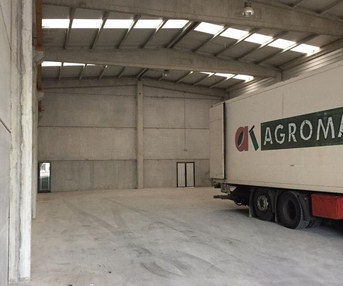 Transportes nacionales e internacionales: Servicios de Ferrol Terra Mensajerías