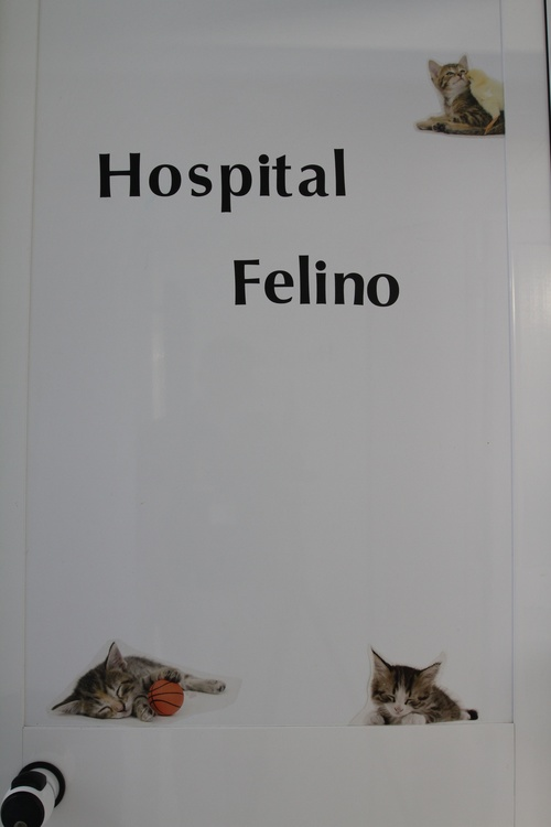 Fotos de Veterinarios en Torremolinos | Clínica Veterinaria Dr. Nieto