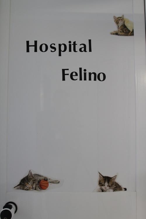 Fotos de Veterinarios en Torremolinos   Clínica Veterinaria Dr. Nieto