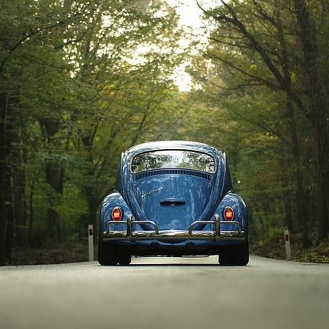 El origen del Volkswagen escarabajo
