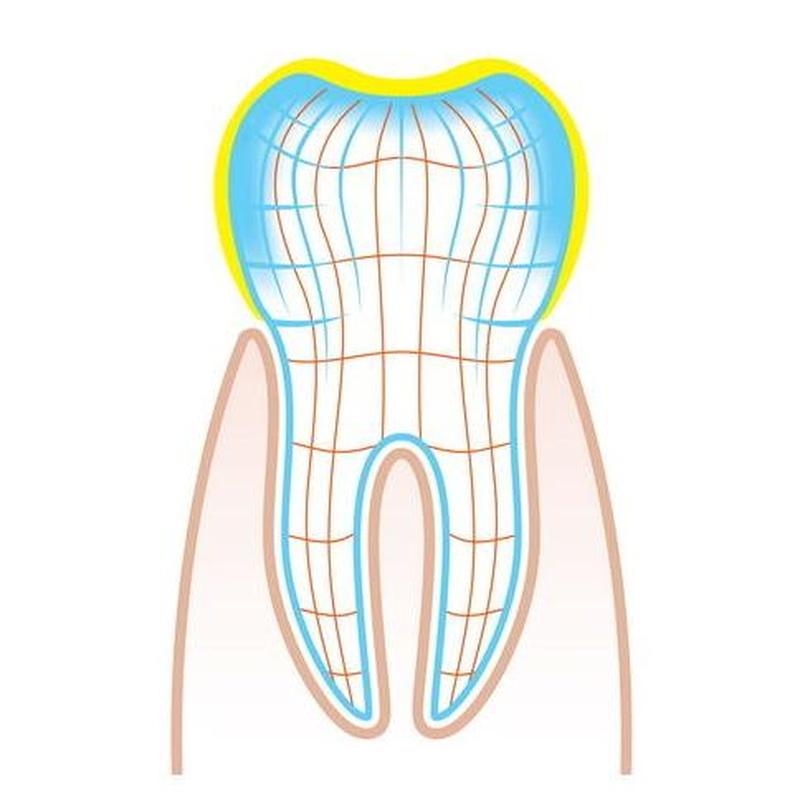 Endodoncias: Servicios  de Lorena Mª Sánchez Liñán