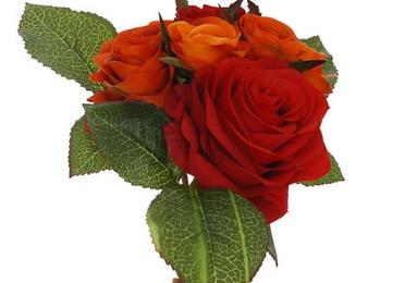 Atado Rosas